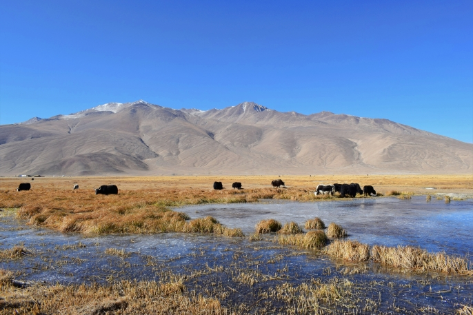 Pamir Highway, Tajikistan, 2017